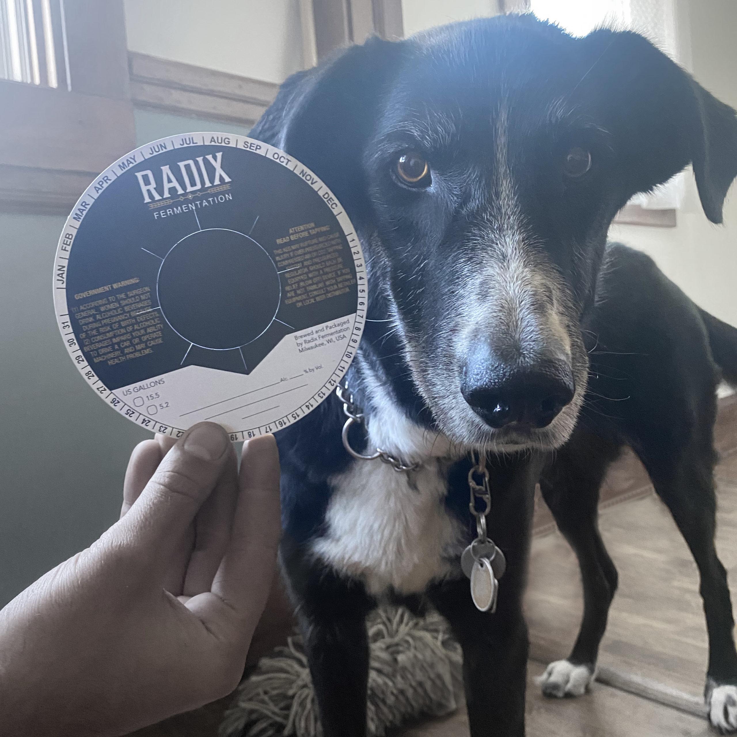 Radix-Lucy